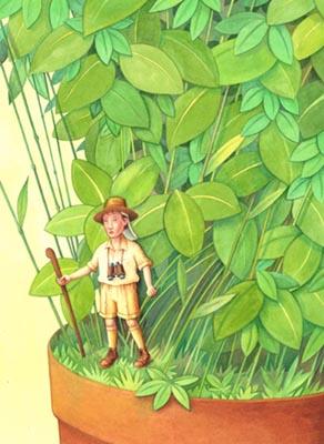 Plantpot Explorer